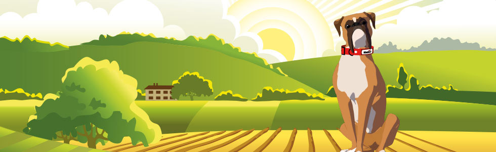 Pneu agricole Kleber